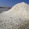 Bijak Menyikapi Kasus Impor Garam di Indonesia