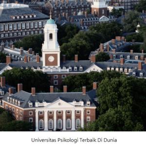 Prospek Kerja Jurusan Psikologi Di Masa Depan Setelah Lulus