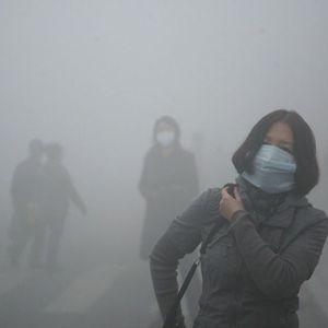 Aksi Indonesia Sehat Hadapi Perubahan Iklim