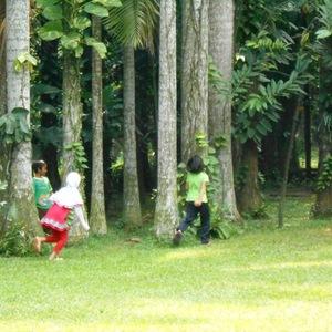 Hutan Kota, Pengobat Rindu Suasana Hijau