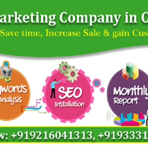 Website Design in Chandigarh