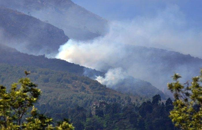 Cuaca Panas Yang Begitu Menyengat Hingga Membuat Hutan Terbakar