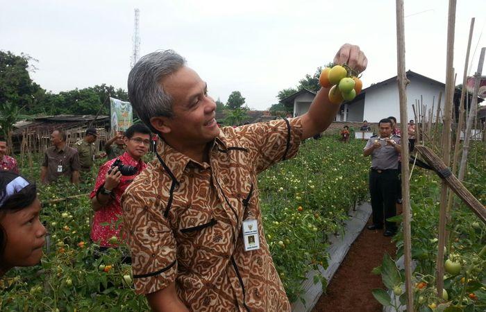 Gubernur Jawa Tengah Resmikan Pembangunan Puskesmas Sluke