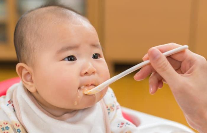 8 Bahan MPASI Untuk Bayi Usia 6-12bulan