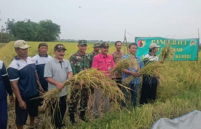 Geliat produksi gabah dan beras pada panen raya di Badas Kediri