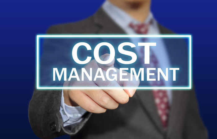 Role Of Cost Management In Any Project