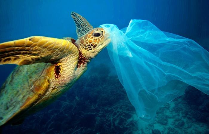 Ternyata Plastik Bisa Merubah Iklim di Bumi