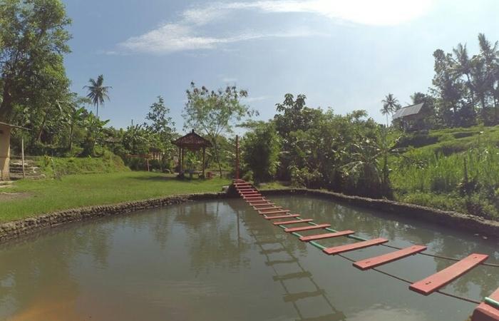 Bermain Autbound Asyik di Desa Wisata Grogol,Sleman ,Yogyakarta
