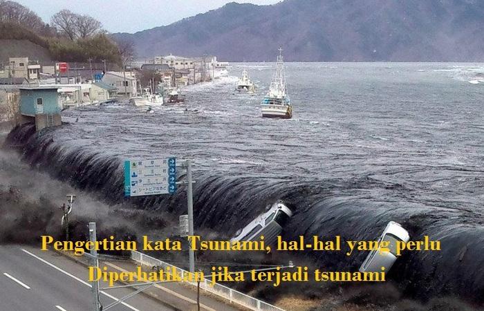 Pengertian kata Tsunami, hal-hal yang perlu diperhatikan jika terjadi tsunami
