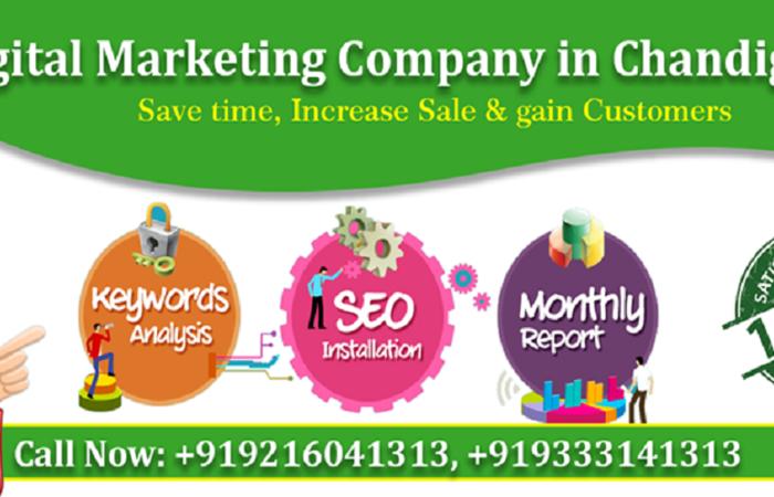Website Design in Chandigarh