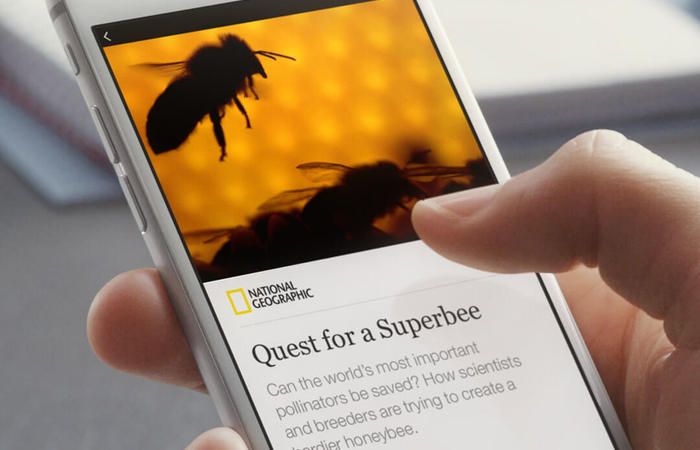 Cara Membuat Instant Articles Facebook di WordPress