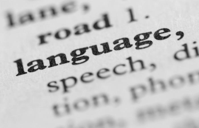 Ini Dia Tempat Kursus Bahasa Asing Online yang Terbaik dan Terjangkau